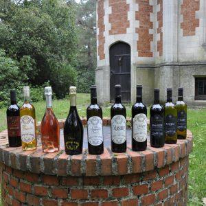 Overzicht alle wijnen