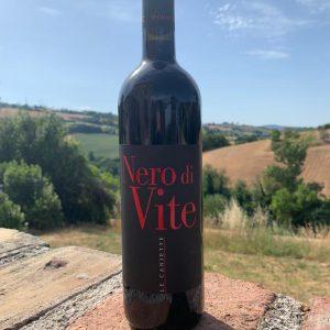 Solevinia Nero Di Vite back